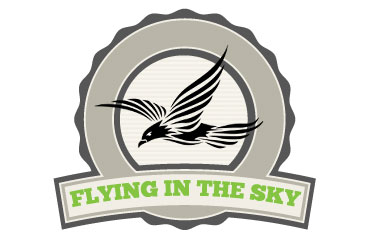 flying-in-the-sky